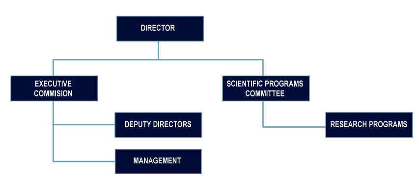 Internal Governing Structure